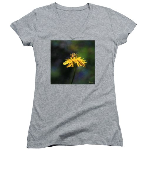 Dandelion Dance Women's V-Neck (Athletic Fit)