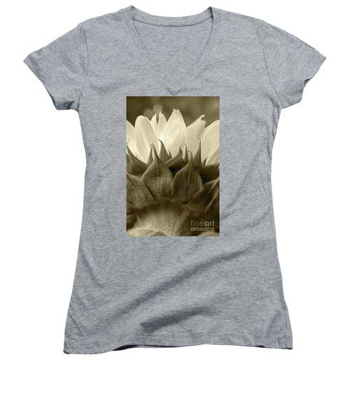 Dandelion In Sepia Women's V-Neck T-Shirt