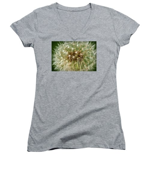 Dandelion Seed Head Women's V-Neck