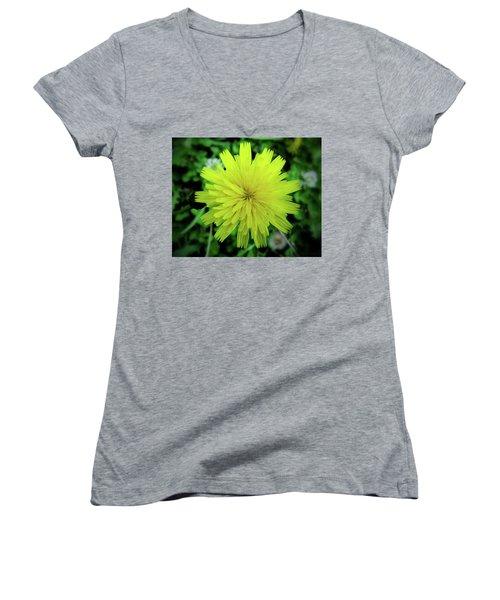 Dandelion Symmetry Women's V-Neck T-Shirt