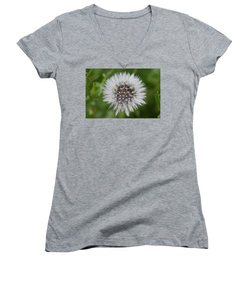 Dandelions Women's V-Neck