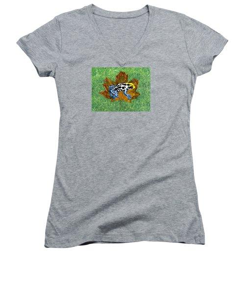 Dart Poison Frog Women's V-Neck T-Shirt (Junior Cut) by Ralph Root
