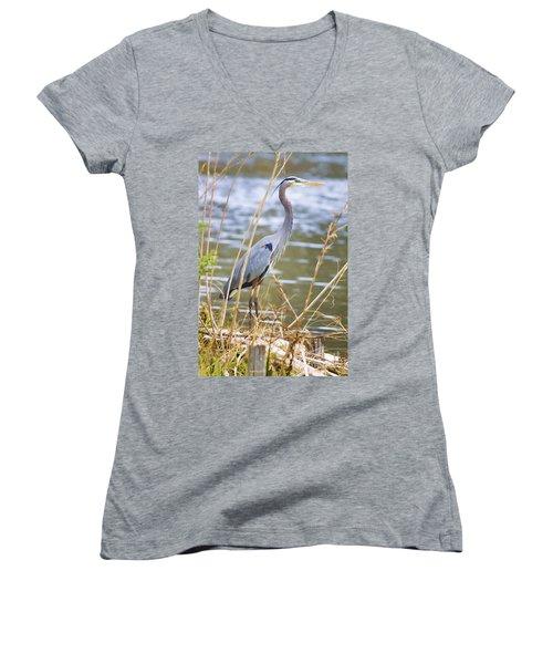 De Leon Springs Blue Women's V-Neck T-Shirt