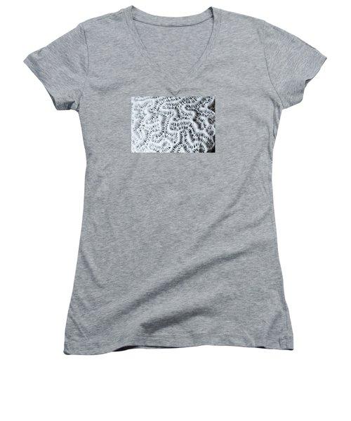 Dead Brain Coral Women's V-Neck T-Shirt (Junior Cut) by Perry Van Munster