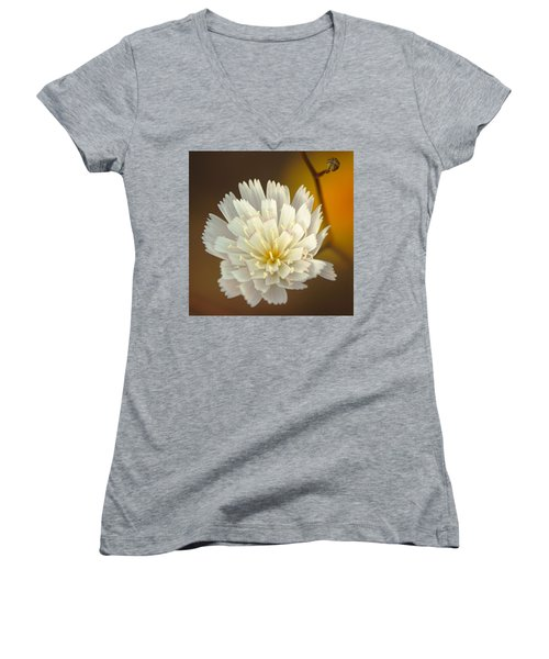 Women's V-Neck T-Shirt (Junior Cut) featuring the photograph Death Valley Superbloom 203 by Daniel Woodrum
