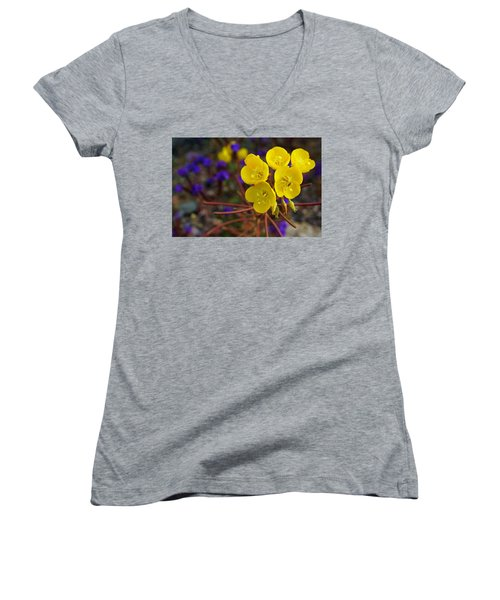 Women's V-Neck T-Shirt (Junior Cut) featuring the photograph Death Valley Superbloom 206 by Daniel Woodrum