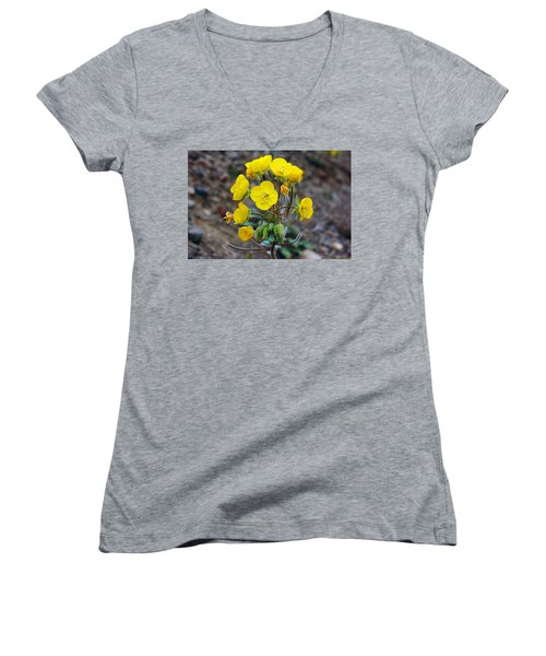 Women's V-Neck T-Shirt (Junior Cut) featuring the photograph Death Valley Superbloom 306 by Daniel Woodrum