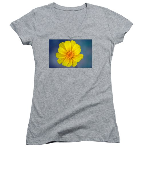 Women's V-Neck T-Shirt (Junior Cut) featuring the photograph Death Valley Superbloom 403 by Daniel Woodrum
