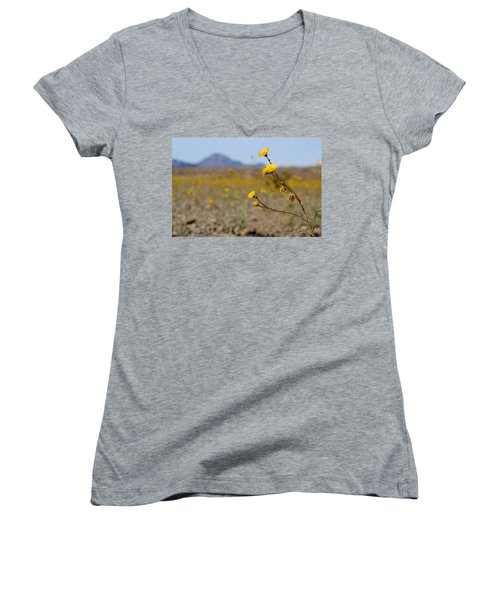 Women's V-Neck T-Shirt (Junior Cut) featuring the photograph Death Valley Superbloom 501 by Daniel Woodrum