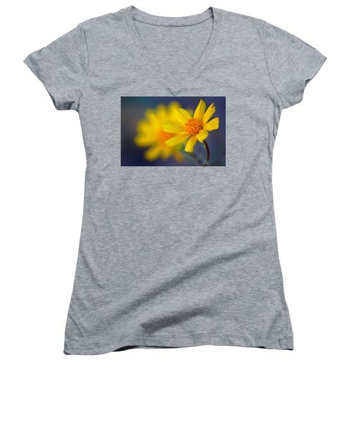 Death Valley Superbloom 503 Women's V-Neck T-Shirt