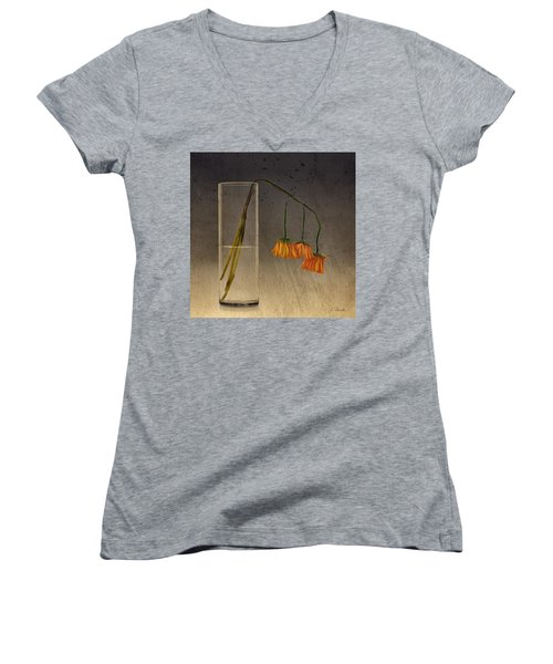 Women's V-Neck T-Shirt (Junior Cut) featuring the photograph Decaying by Joe Bonita