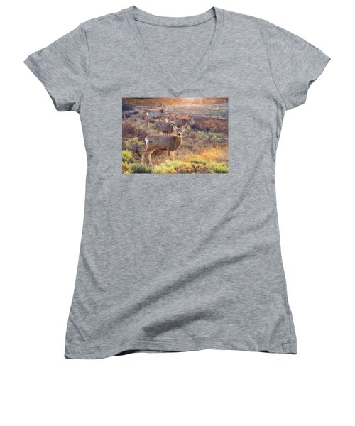 Women's V-Neck T-Shirt (Junior Cut) featuring the photograph Deer In The Sunlight by Darren White