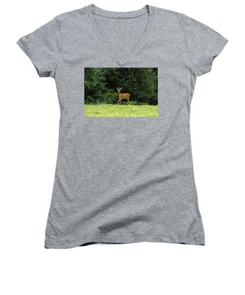 Deer In The Woods Women's V-Neck