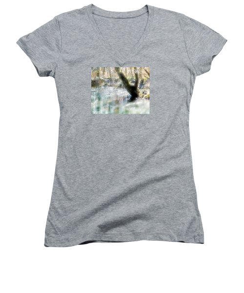 Degenried Switzerland Women's V-Neck T-Shirt (Junior Cut) by Mimulux patricia no No
