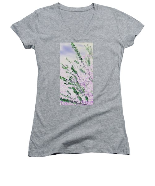Delicacy Women's V-Neck T-Shirt