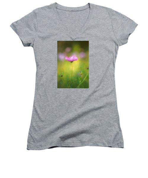 Delicate Beauty Women's V-Neck (Athletic Fit)