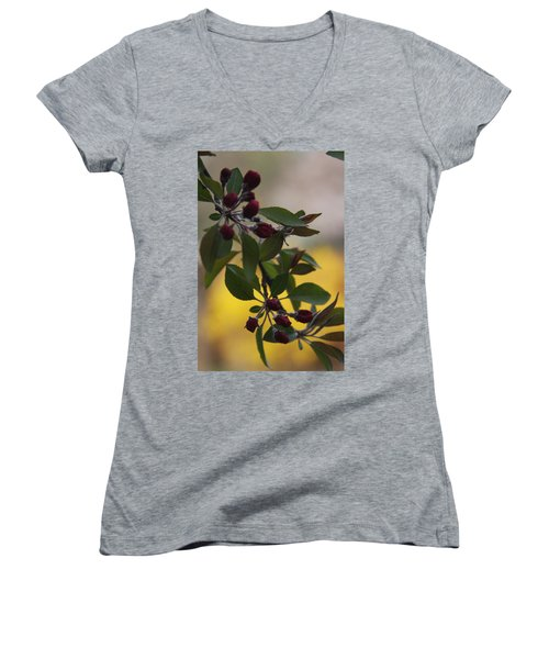 Delicate Crabapple Blossoms Women's V-Neck T-Shirt (Junior Cut) by Vadim Levin