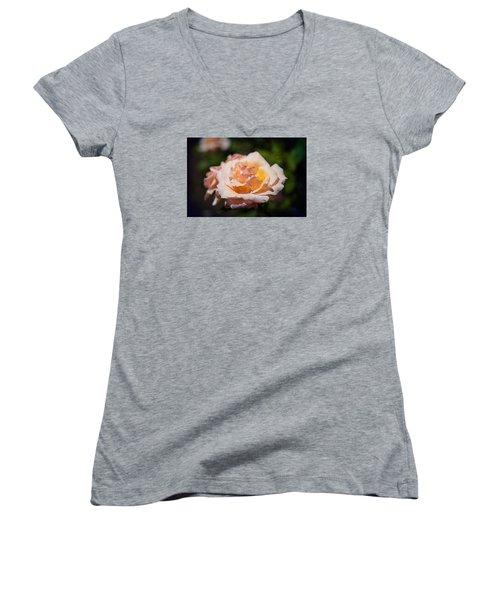 Delicate Rose Women's V-Neck