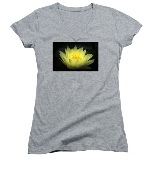 Delicate Water Lily Women's V-Neck T-Shirt (Junior Cut) by Lori Seaman