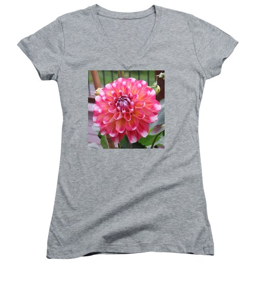 Denali Dahlia Women's V-Neck T-Shirt