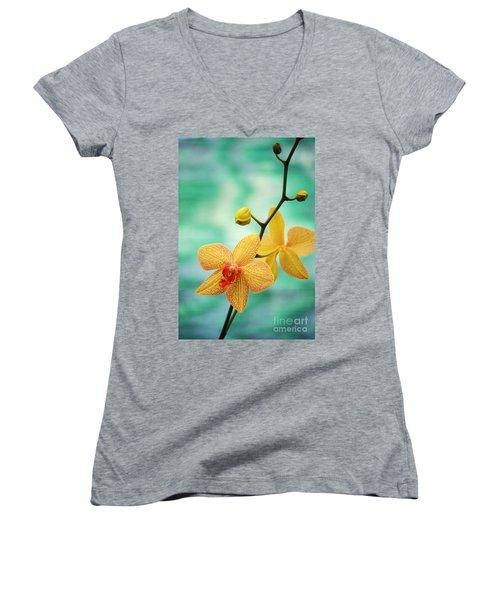 Dendrobium Women's V-Neck T-Shirt