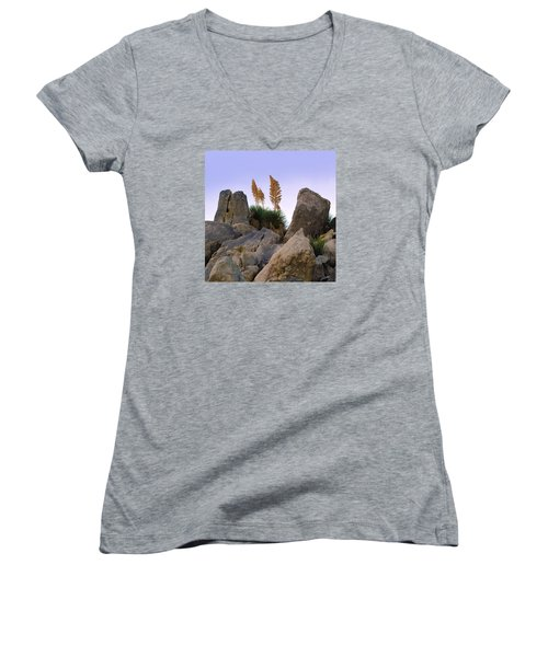 Desert Flags - Cropped Version Women's V-Neck (Athletic Fit)