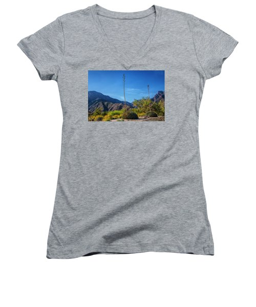 Women's V-Neck T-Shirt (Junior Cut) featuring the photograph Desert Flowers In The Anza-borrego Desert State Park by Randall Nyhof