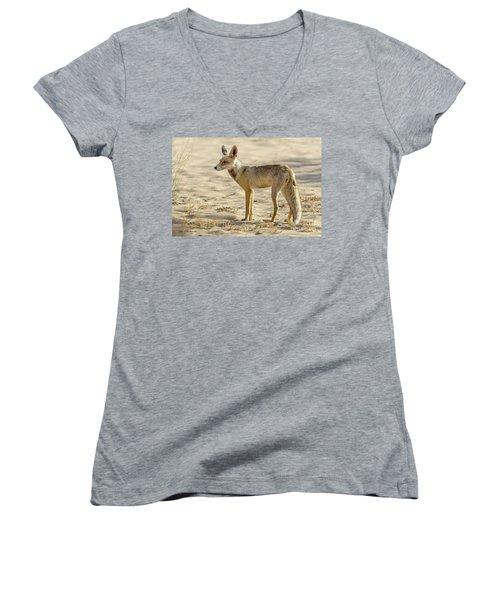 desert Fox 02 Women's V-Neck T-Shirt (Junior Cut) by Arik Baltinester