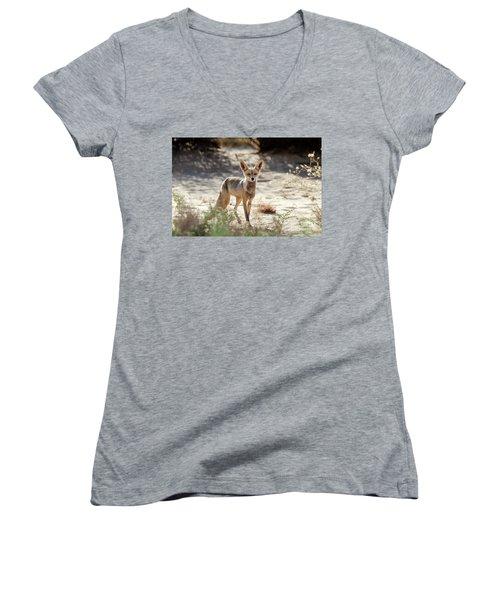 Desert Fox Women's V-Neck T-Shirt (Junior Cut) by Arik Baltinester
