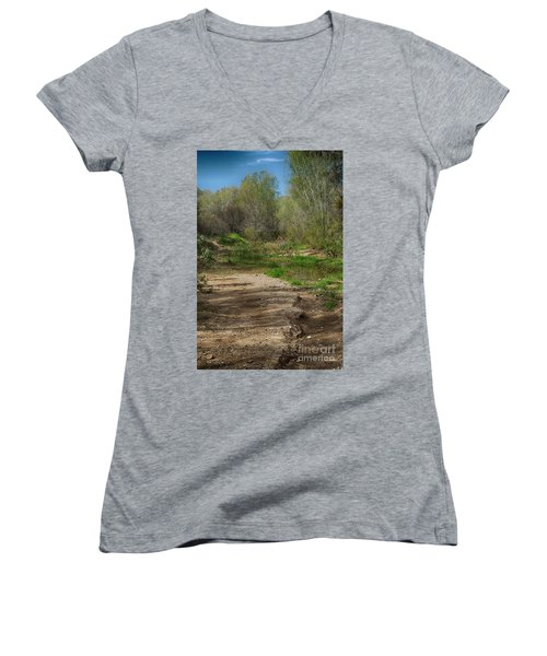 Women's V-Neck T-Shirt (Junior Cut) featuring the photograph Desert Oasis by Anne Rodkin