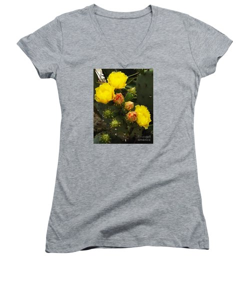 Desert Rose Women's V-Neck T-Shirt (Junior Cut) by Audrey Van Tassell