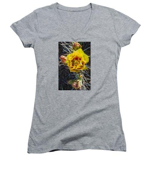 Desert Rose Women's V-Neck T-Shirt