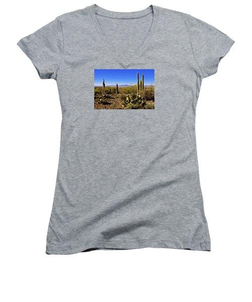Desert Spring Women's V-Neck T-Shirt (Junior Cut) by Chad Dutson