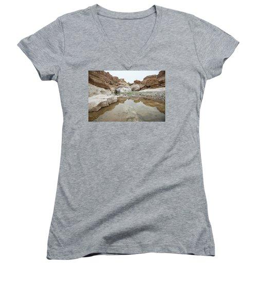 Desert Water Women's V-Neck T-Shirt (Junior Cut) by Yoel Koskas