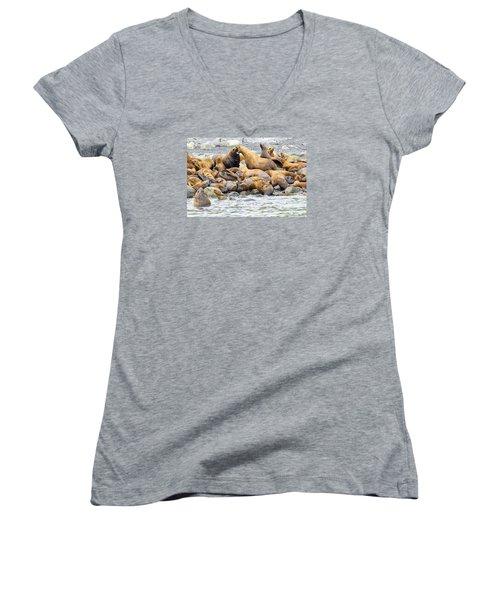 Disagreement Women's V-Neck T-Shirt (Junior Cut) by Harold Piskiel