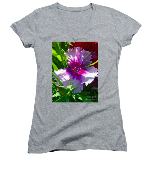 Dianthus Carnation Women's V-Neck