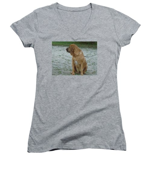 Did You Hear That? Women's V-Neck T-Shirt (Junior Cut) by Val Oconnor