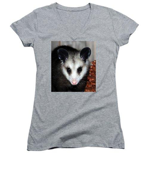 Dining Possums Vii Women's V-Neck T-Shirt