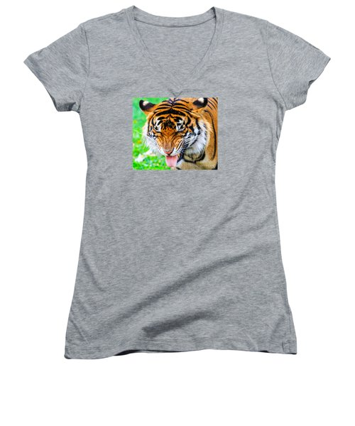 Disgusted Tiger Women's V-Neck (Athletic Fit)