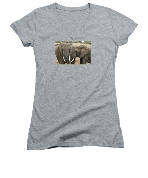 Women's V-Neck T-Shirt (Junior Cut) featuring the photograph Display Of Affection by Gary Hall