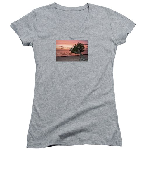 Divi Divi Aruba Women's V-Neck T-Shirt (Junior Cut) by DJ Florek