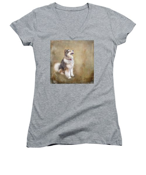 Women's V-Neck T-Shirt (Junior Cut) featuring the digital art Master Of The Domain by Colleen Taylor