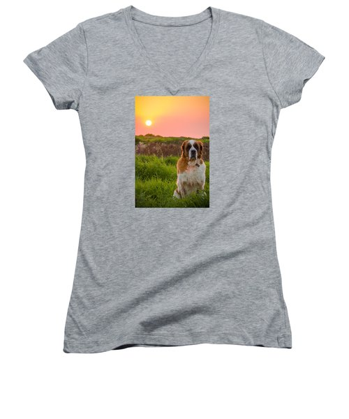 Dog And Sunset Women's V-Neck (Athletic Fit)