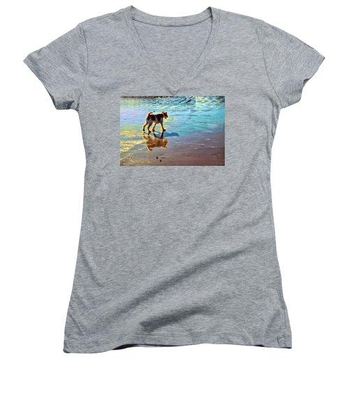 Doggone Beachy Day Women's V-Neck (Athletic Fit)