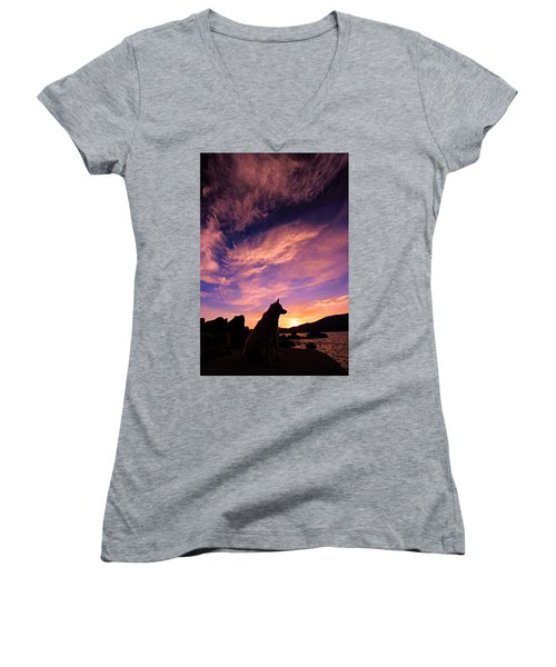 Dogs Dream Too Women's V-Neck T-Shirt (Junior Cut) by Sean Sarsfield