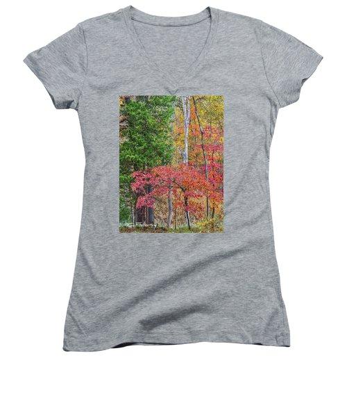 Dogwood And Cedar Women's V-Neck T-Shirt (Junior Cut) by Tim Fitzharris