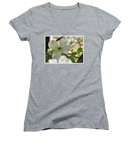 Dogwood Bloom Women's V-Neck (Athletic Fit)