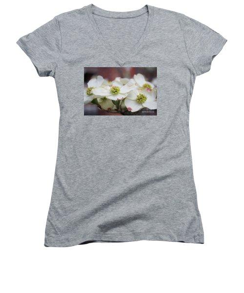 Dogwood Flowers Women's V-Neck T-Shirt