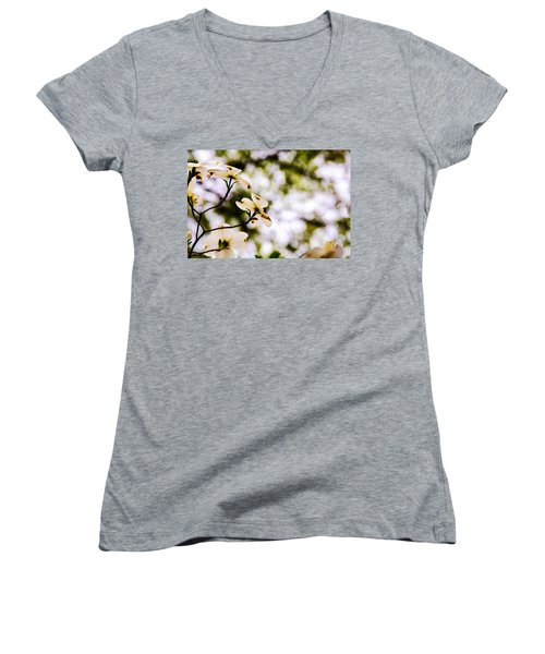 Women's V-Neck T-Shirt (Junior Cut) featuring the photograph Dogwoods Under The Pines by John Harding