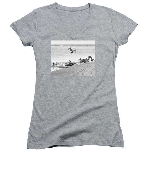Dolphin And Pelican Party Women's V-Neck